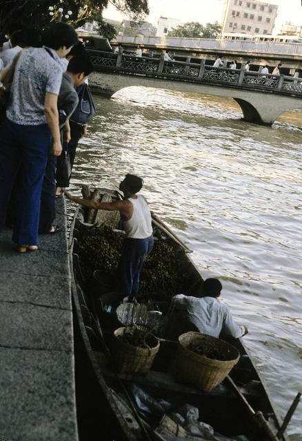 Leechee [sic] nuts on Pearl River
