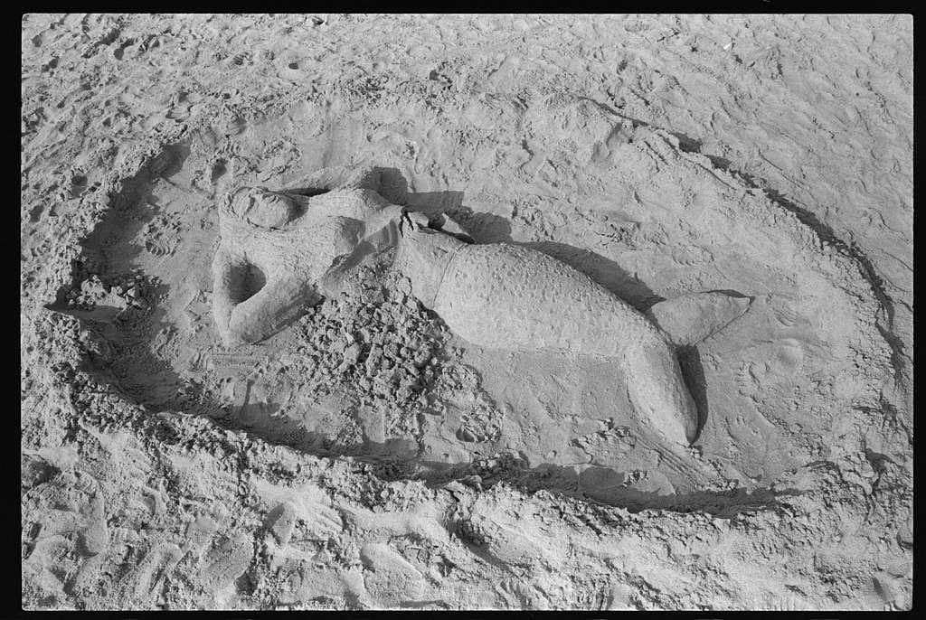 Sand sculpture Contest, Canonchet Beach; Burns family, Canonchet Beach, Narragansett, Rhode Island