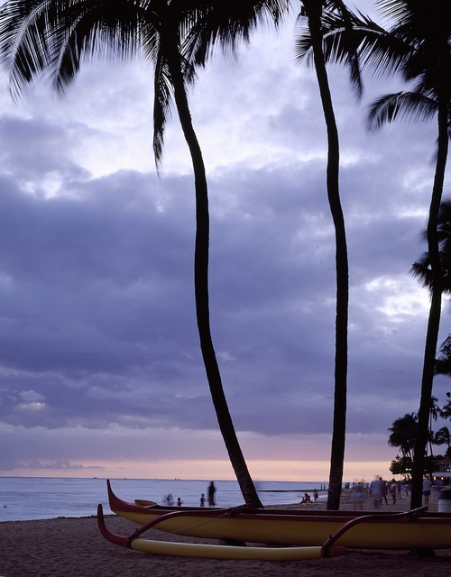 Boat and Palm tree outline at a Hawaiian beach