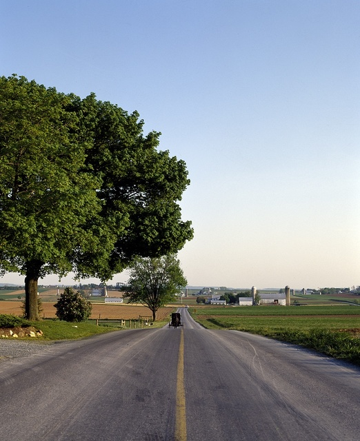"""Horse and buggy on the road in """"Amish Country,"""" Lancaster County, Pennsylvania"""