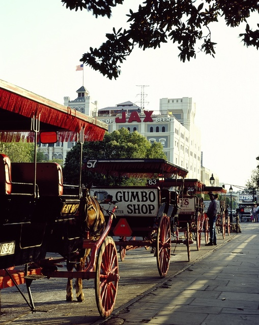 Horses and buggies waiting for fares in front of Jackson Square, New Orleans, Louisiana