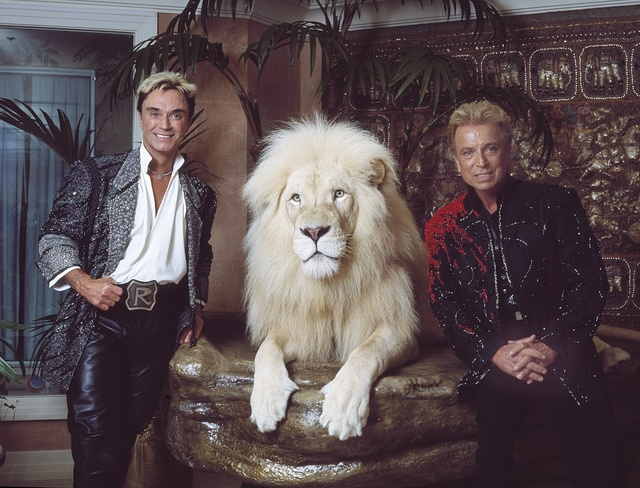 Las Vegas, Nevada's headlining illusionists Siegfried & Roy (Siegried Fischbacher and Roy Horn) in their private apartment at the Mirage Hotel on the Vegas Strip, along with one of their performing white lions
