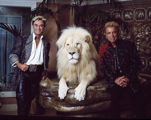 Las Vegas superstar illusionists Siegfried (right) and Roy (and a large feline friend) at their MIrage Hotel apartment, prior to Roy's nearly fatal encounter with a white tiger on stage during one of their performances. Las Vegas, Nevada