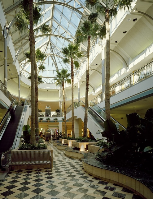 Shopping mall atrium and escalators