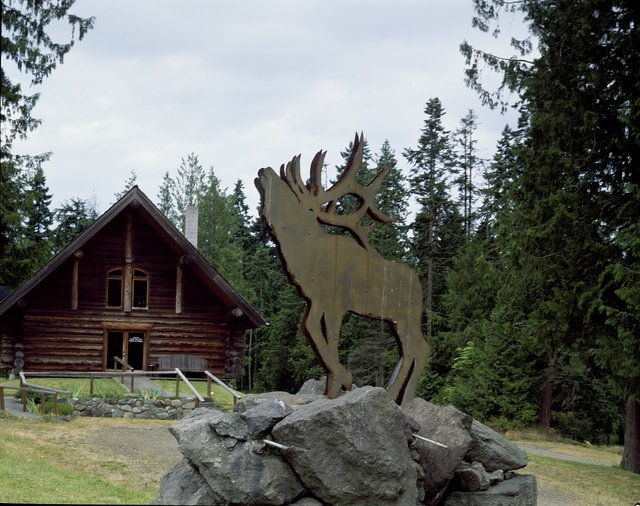 The call of an elk, or at least the metal-art depiction of one, in the Pacific northwest
