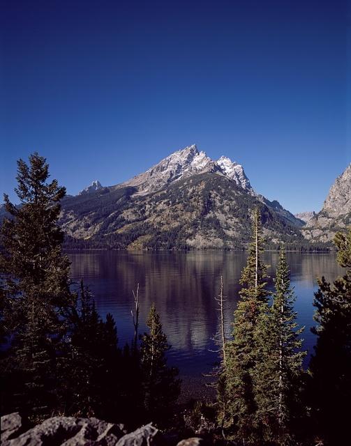 [View, Grand Teton National Park, Wyoming]
