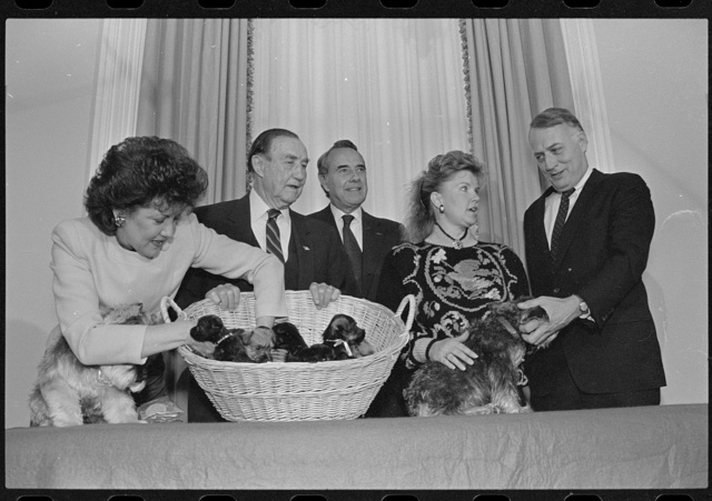 [Senators Bob Dole and Strom Thurmond, and their wives, at the official presentation of the Miniature Schnauzer puppies between their dogs Chelsea Marie and Leader]