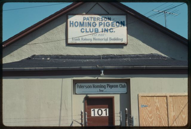 A view of a pigeon club on State Street.