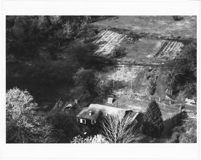 Aerial view of Ben Burnside's place, showing garden with fodder shocks, house, outbuildings, and shade garden