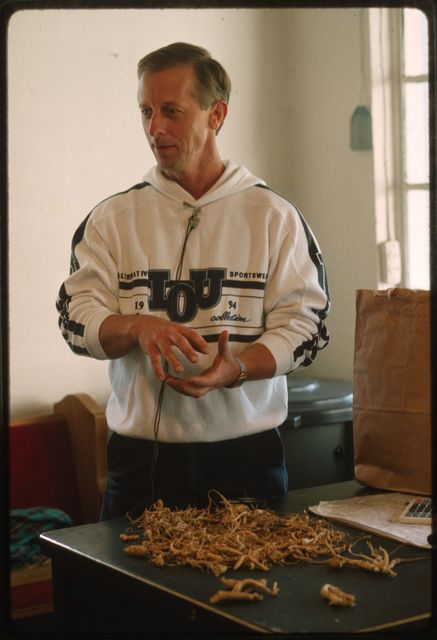 Randy Halstead, ginseng broker, evaluates ginseng in the purchase room of Randy's Recycling