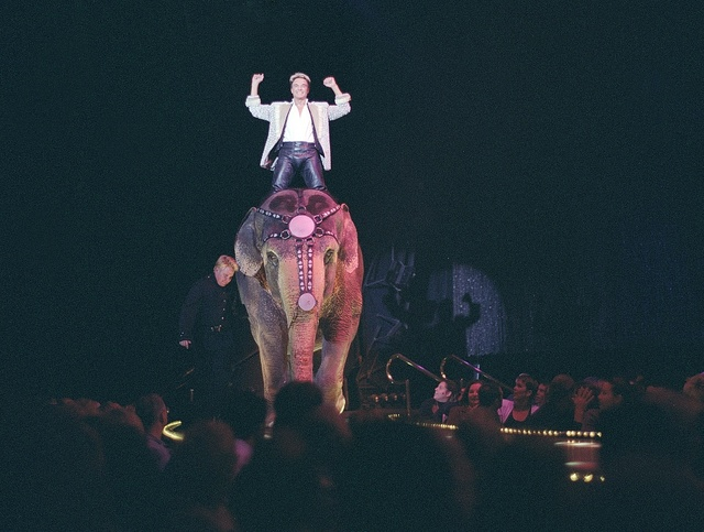 Roy Horn of the illusionist pair Siegried and Roy, with a friend onstage at the Mirage Hotel, Las Vegas, Nevada, just months prior to Horn's career-disabling mauling by a white tiger in 2003