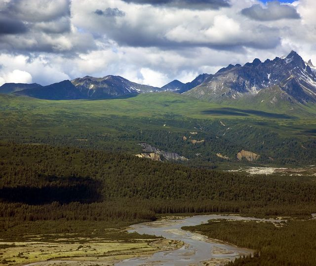 Remote glacial river and alpine forest amongst mountains. Denali National Park, Alaska