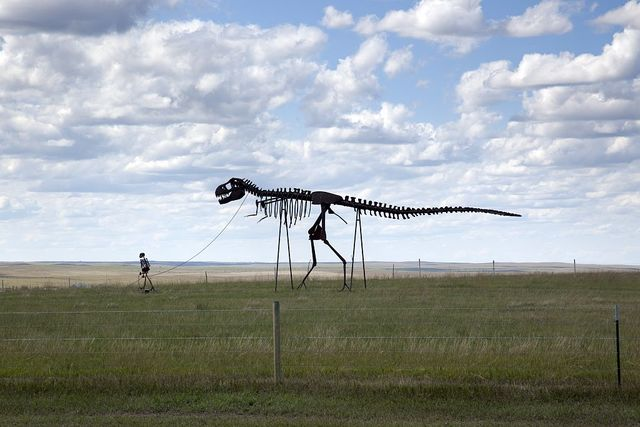 You see the strangest things in the South Dakota countryside, near Murdo, South Dakota