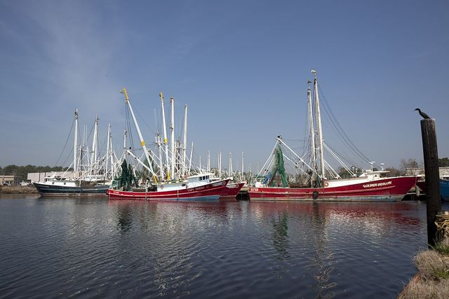 Bayou La Batre, Alabama, is a fishing village with a seafood-processing harbor for fishing boats and shrimp boats