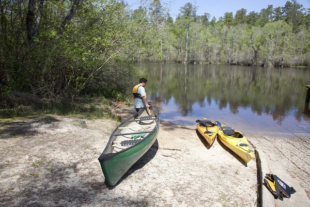 Captain Michael Dorie, who runs the 5 Rivers Delta Safaris can navigate the complex waterways of the Mobile-Tensaw Delta. A canoe trip up the Mobile Delta which consists of approximately 20,323 acres of water just north of Mobile Bay, Alabama