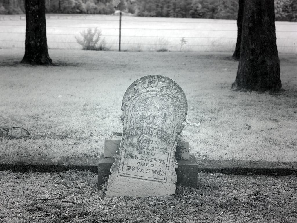 Cemetery in a cow pasture in rural Monroe County, Alabama