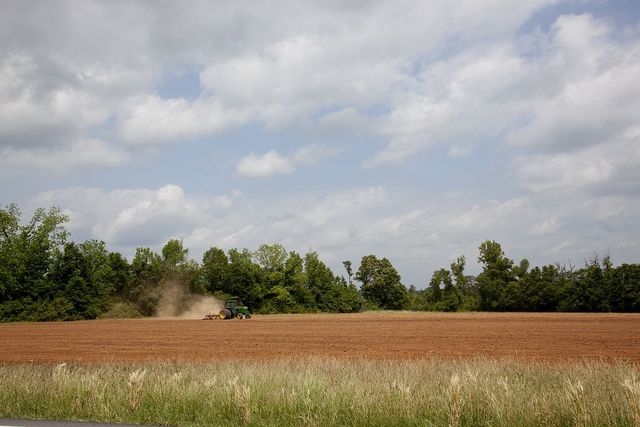 Farmland in Monroe County, Alabama