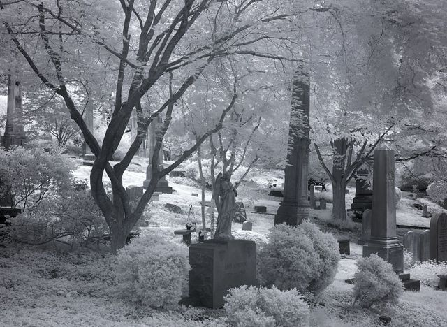 Gravestones at Oak Hill Cemetery, Washington, D.C.