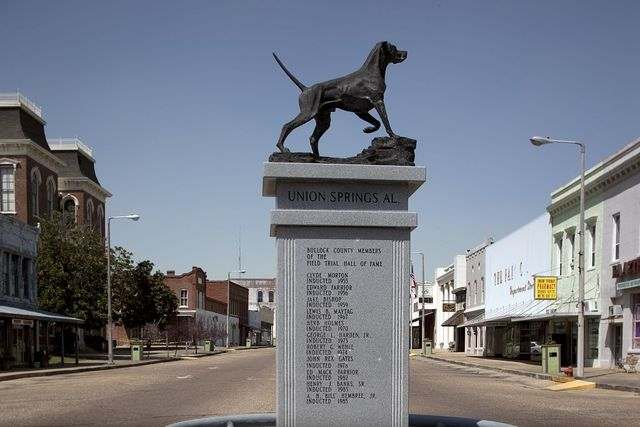 Life-size bronze statue of an English pointer, Union Springs, Alabama
