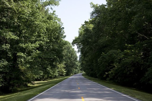 [Natchez Trace parkway in Florence, Alabama]