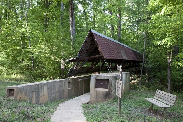 Perry Lakes Canopy Tower designed by the Rural Studio, Newbern, Alabama