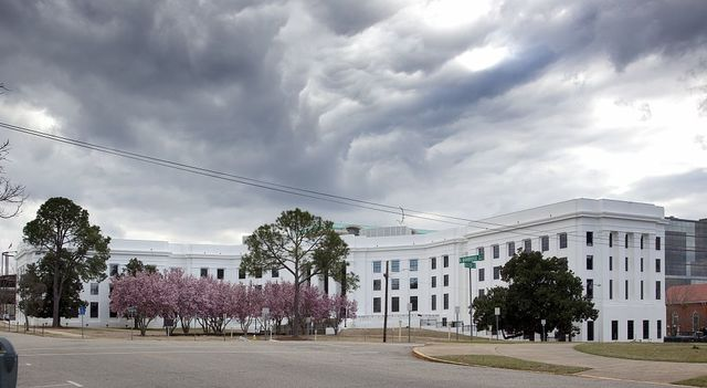 Trees bloom in front of the State Government Building, Montgomery, Alabama