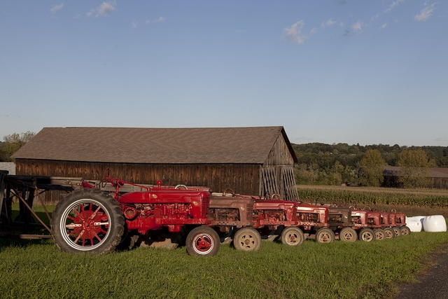 Red tractors and tobacco barns in Suffield, Connecticut