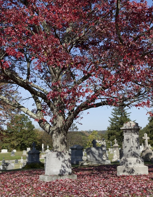 St. John Cemetery, Darien, Connecticut