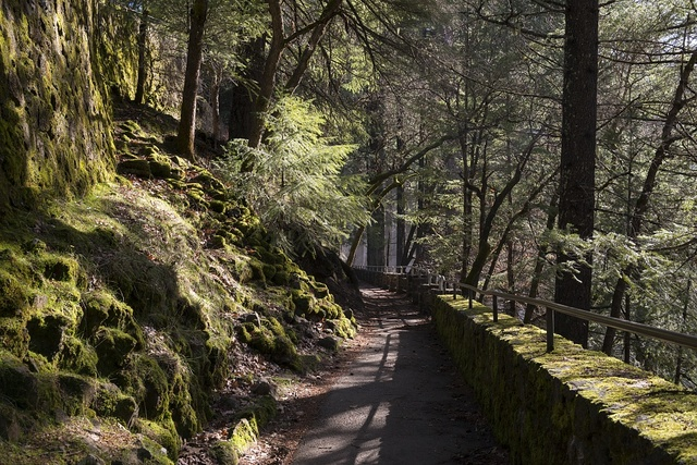 Steep stairway to the waterfall at MacArthur-Burney Falls Memorial State Park in California