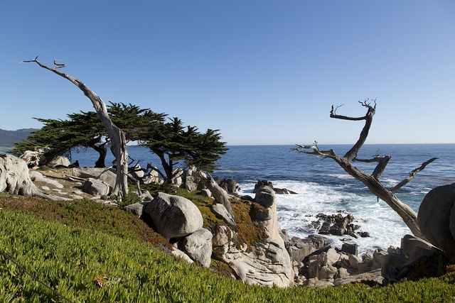 View of Pacific Coast near 17-Mile Drive is a scenic road through Pacific Grove and Pebble Beach on the Monterey Peninsula in California