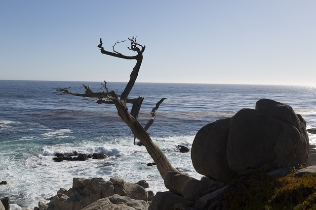 View of Pacific ocean ocean along 17-Mile Drive, a scenic road through Pacific Grove and Pebble Beach on the Monterey Peninsula in California