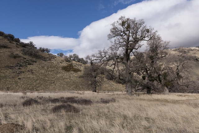 Mountainside scene at Fort Tejon, a California State Historical Park, in Grapevine Canyon on the main route between California's central valley and Southern California
