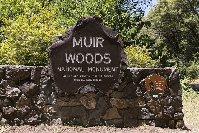 Muir Woods National Monument on the Pacific coast of southwestern Marin County, California