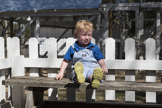 2-year-old Gavin Olson of Savannah, Texas, a visitor to the Heritage Farmstead Museum, takes a break after feeding piglets and goats at the living-history site interpreting the Texas Blackland Prairie region in North Texas in Plano, a northern suburb of Dallas, Texas