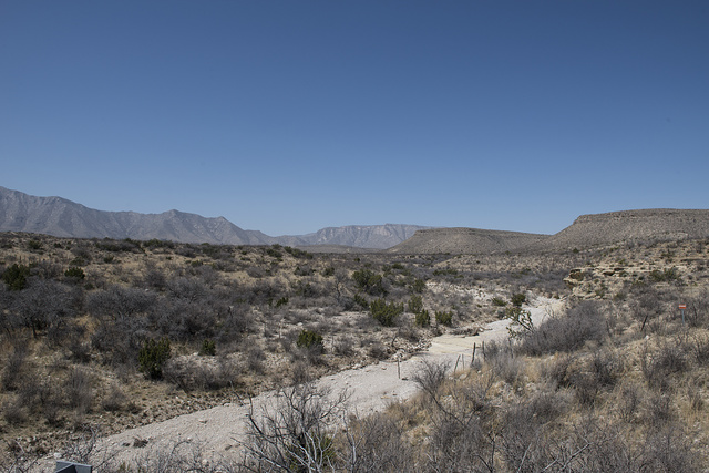 A dry wash in the high country to the east of Guadalupe Mountains National Park, which is split between Hudspeth and Culberson counties in Texas, along the New Mexico border