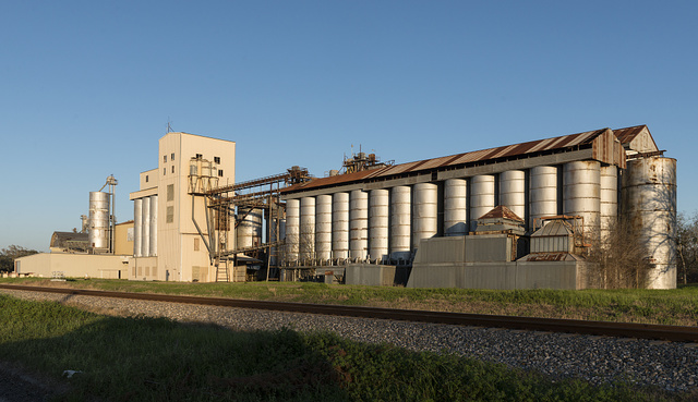 A grain elevator in the town of Louise, Texas