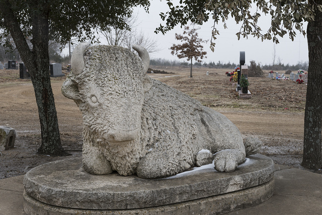 Bison grave marker in the Evergreen Cemetery, Paris, Texas