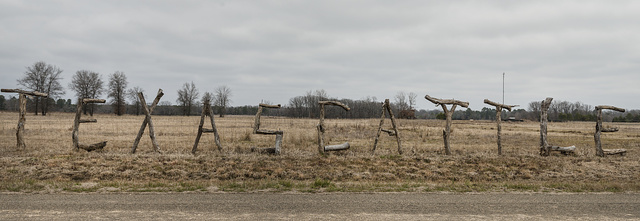 Branches spell out the state name and what this ranch raises near Texarkana, Texas