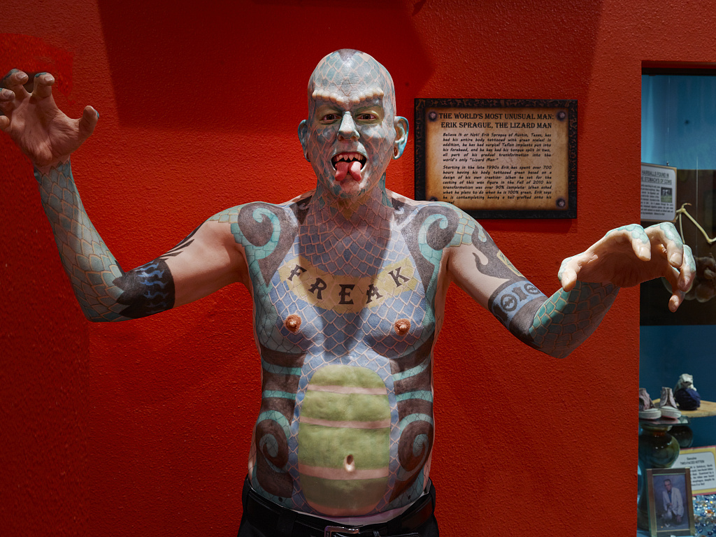 """Depiction of Erik Sprague, the """"Lizard Man,"""" who, among other things, has a forked tongue, in the """"odditorium"""" portion of the Ripley's Believe It Or Not attraction in Grand Prairie, Texas Even Sprague calls himself """"The Freak"""""""