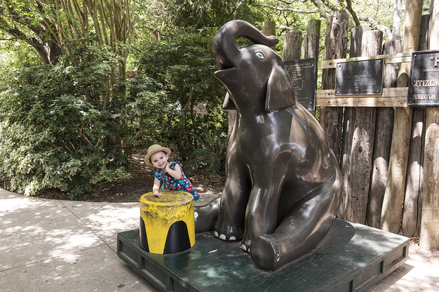 Four-year-old Lily Macey supplants an (albeit statuary) elephant from its stool at the Houston, Texas, zoo