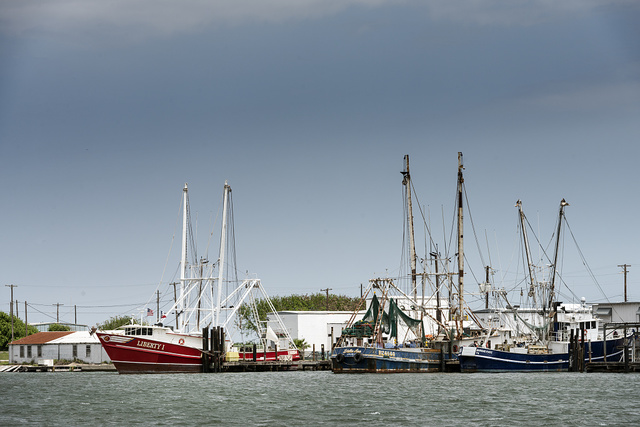 Part of the shrimp-boat fleet moored in Redfish Bay at Aransas Pass, Texas, near Corpus Christi, Texas