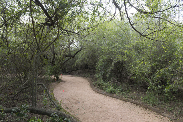 Pathway at Quinta Mazatlan, a historical adobe mansion and nature and birding center located in McAllen, Texas