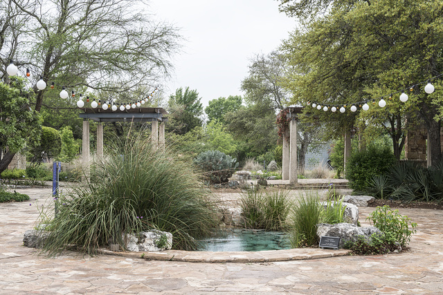 Scene from the Lady Bird Johnson Wildflower Center, part of the University of Texas at Austin but located 10 miles south of the Texas capital