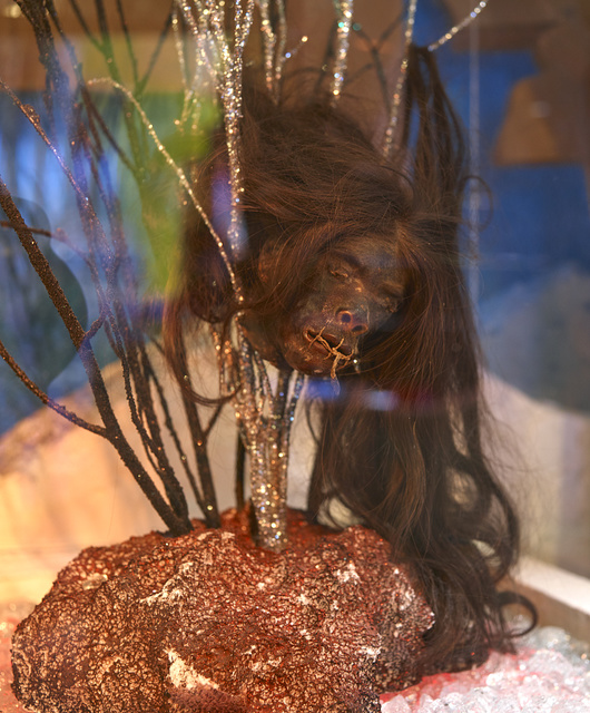 """Shrunken head in the """"odditorium"""" at the Ripley's Believe It Or Not attraction in Grand Prairie, Texas"""