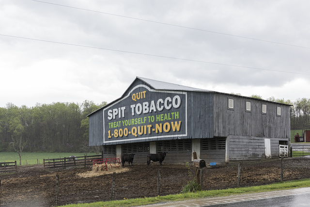 """A barnside billboard in rural Hampshire County, West Virginia, containing a health warning directed at the many users of chewing or """"spit"""" tobacco in rural parts of Appalachia"""