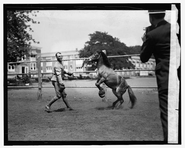Albert Walker, M.C. & pony of Col. Fred W. Van Dyne[?], 7/21/24