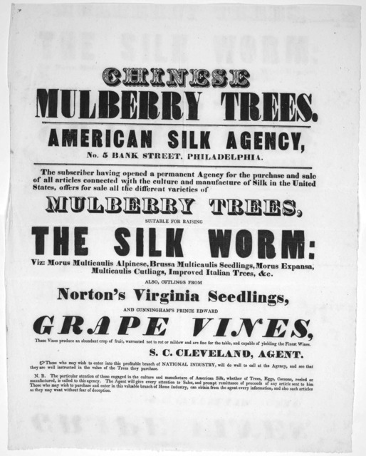 Chinese mulberry trees. American silk agency, No. 5 Bank street Philadelphia. The subscriber having opened a permanent agency for the purchase and sale of all articles connected with the culture and manufacture of silk in the United states, offe