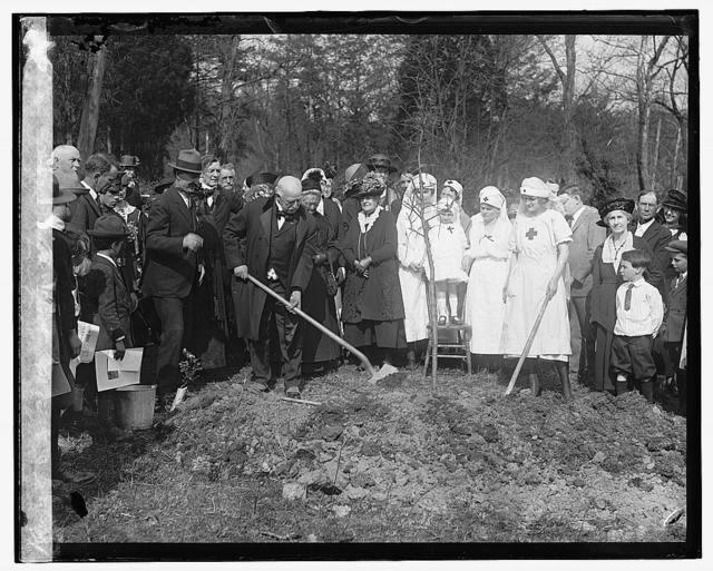 Clara Barton tree planting, 4/17/22