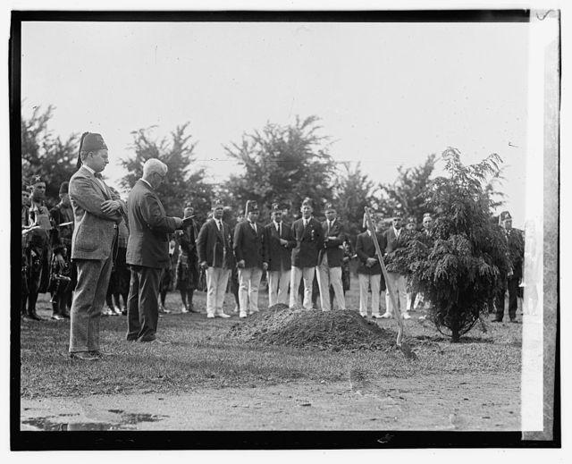 Cong. Snyder of N.Y. planting memorial tree in Potomac Park, 6/7/23