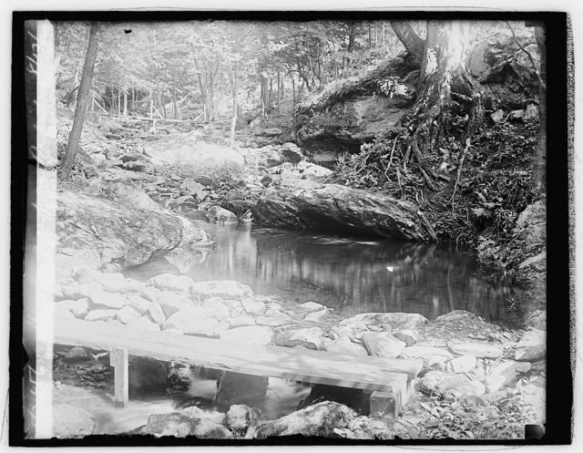 Hoover camp on Rapidan, 8/17/29